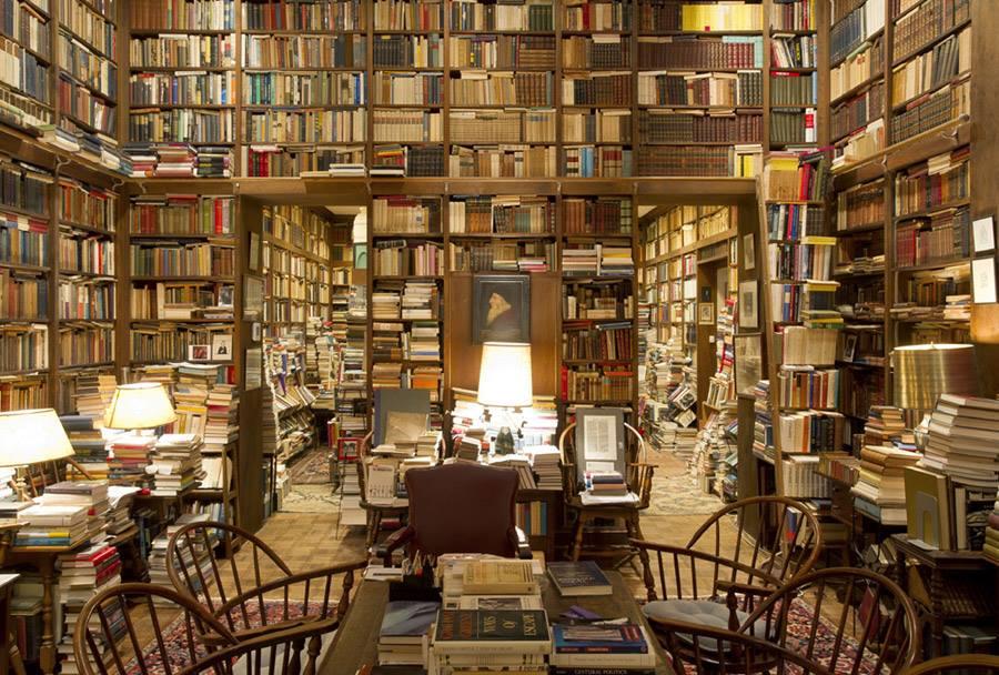Огромное пространство с книжными полками